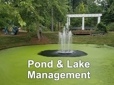 Pond Maintenance Services for residential, commercial, universities, agricultural, and HOAs